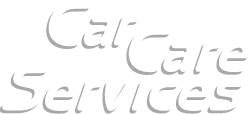 CCS – Car Care Services